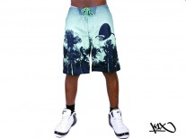 K1X Paradise Boardshorts green/lime